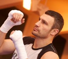 Виталий Кличко и Бермейн Стиверн возможно проведут бой в Оттаве