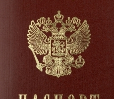 Правительство России прорабатывает процедуру упрощения получения гражданства