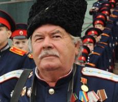 Донские казаки прорвались в Донецк