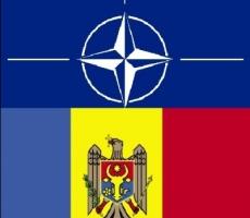 В Кишиневе проходят культурные мероприятия в контексте сотрудничества Молдовы и НАТО