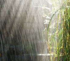 В результате прошедших сильных дождей в селах Молдовы и Приднестровья нарушено электроснабжение