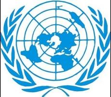 ООН срочно созывает Совет безопасности для детального рассмотрения ситуации с Боингом-777