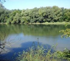 В Приднестровье в ближайшие дни сохранится солнечная погода
