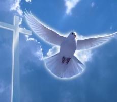 Православный мир отмечает праздник - Крещение Господне