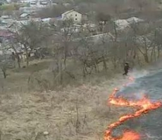 В Молдове начались лесные пожары