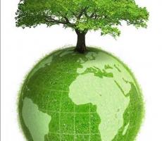 Сегодня международный день экологических знаний