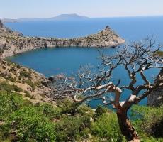 Российских школьников отправят в Крым на летние каникулы