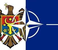 Вчера спикер Молдовы провел встречу с членами Комитета НАТО по партнерству и безопасности