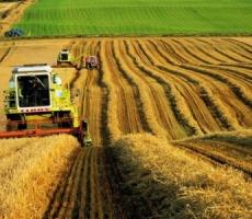 В Украине в хозяйственной деятельности торговые патенты плательщикам не требуются