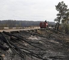 Масштабный пожар возник в Зоне отчуждения