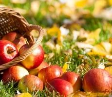 """Сегодня православный мир отмечает """"яблочный спас"""""""