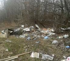 В Молдове объявлена награда за сообщения о несанкционированных свалках