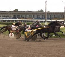В Приднестровье прошел турнир по конному спорту