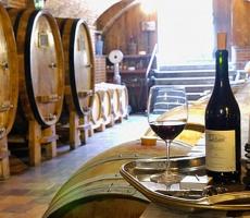 Молдавское вино постепенно возвращается на российский рынок