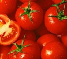 Приднестровские томаты могут заменить на рынке РФ турецкие помидоры