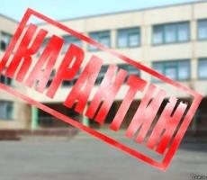 """В Ярославской области школьников отправят на карантин из-за """"свиного гриппа"""""""