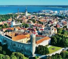 В Таллине митингуют против мигрантов