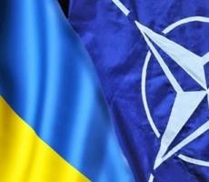 Украину снова пообещали взять в НАТО