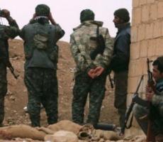 Курды освободили Манбидж от исламистов