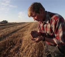 Фермеры Украины готовы к восстанию