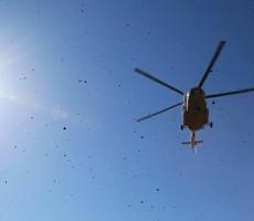 Вертолет МЧС разбился в Подмосковье