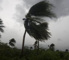 Жители Флориды массово покидают свои дама из-за смертельного урагана
