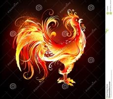 Огненный Петух любит ранний подъем