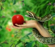 Сегодня символ дня Змей – искуситель, который обостряет искушения